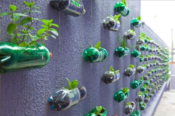jardim vertical de garrafa pet passo a passo: com recicláveis